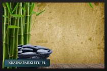 Bambus i ochrona środowiska